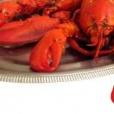 Fisk- & skaldjursrestauranger